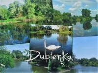 Dubienka20